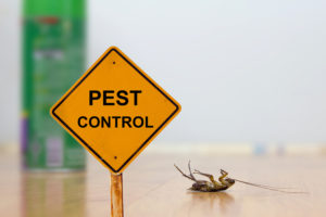 Pest Control sign with dead bug next to it
